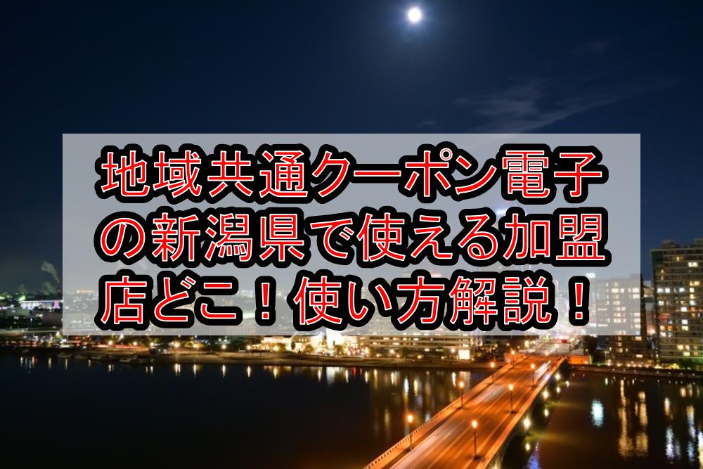 地域共通クーポン電子の新潟県(市)で使える加盟店どこ!使い方や駅・空港等も対象か解説!