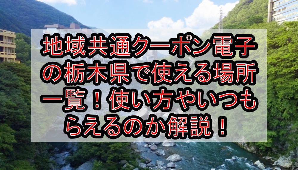 地域共通クーポン電子の栃木県(市)で使える場所・加盟店一覧!使い方やいつもらえるのか解説!