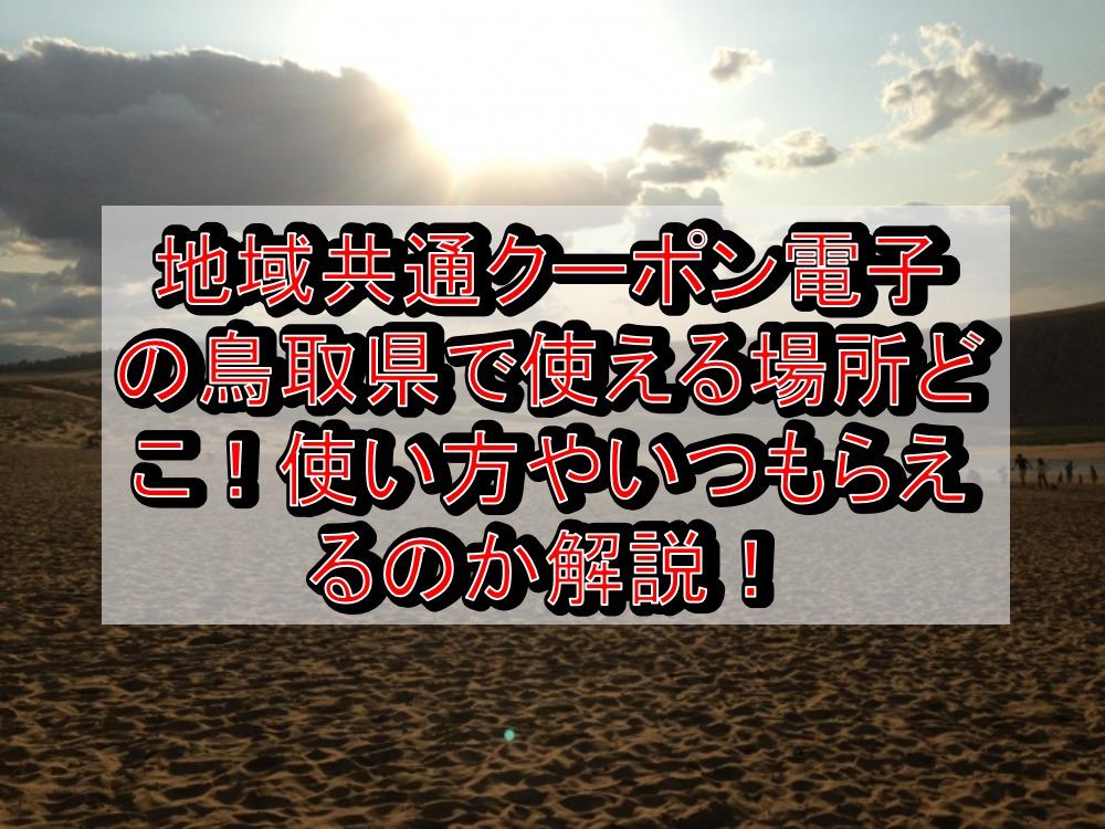 地域共通クーポン電子の鳥取県(市)で使える場所どこ!いつもらえて使い方や購入方法を解説!