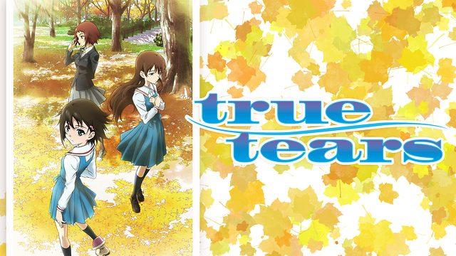 true tears聖地巡礼・ロケ地(舞台)!アニメロケツーリズム巡りの場所や方法を徹底紹介!