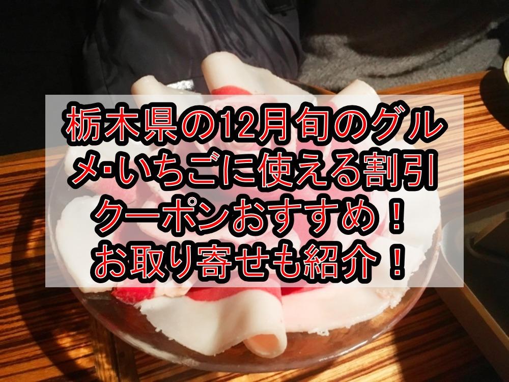 栃木県の12月旬のグルメ・いちごに使える割引クーポン・食事券おすすめ!お取り寄せも紹介!