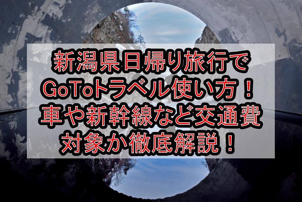 新潟県日帰り旅行・温泉でGoToトラベル使い方!車や新幹線など交通費対象か徹底解説!