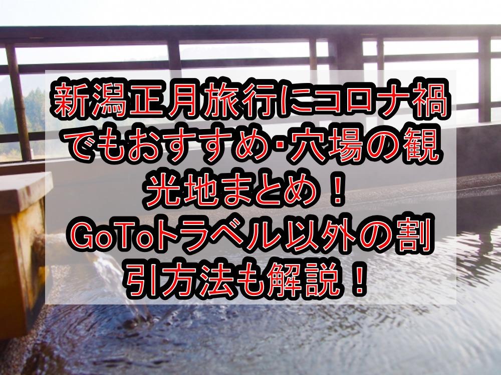 新潟正月旅行にコロナ禍でもおすすめ・穴場の観光地まとめ!GoToトラベル以外の割引方法も解説!