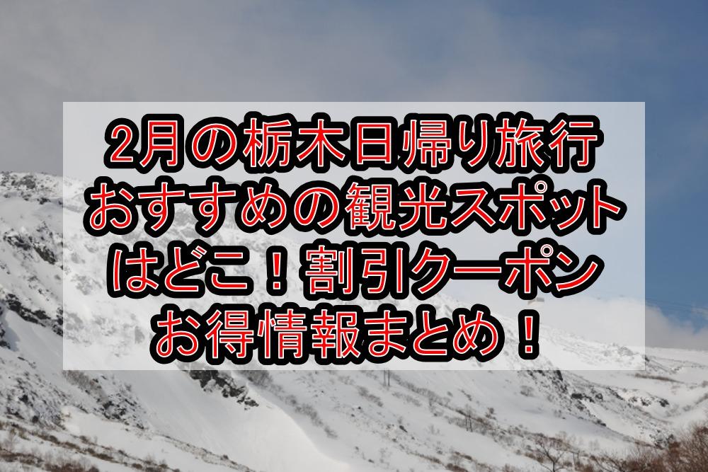 2月の栃木日帰り旅行おすすめの観光スポットはどこ!割引クーポンお得情報まとめ!