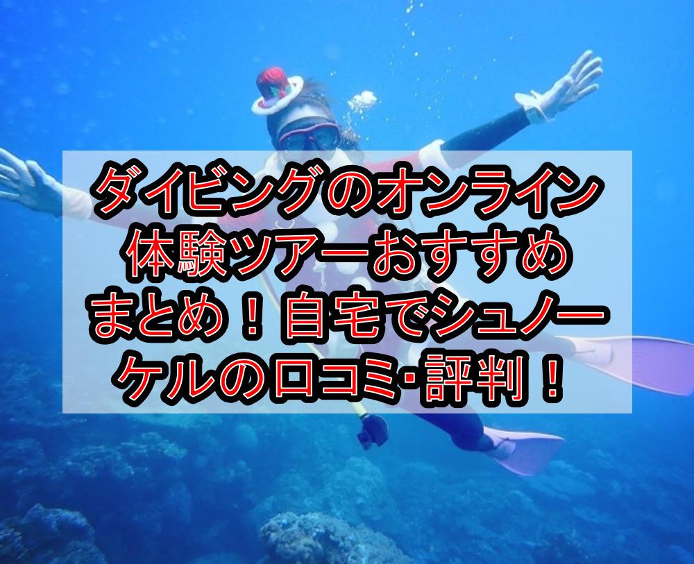 ダイビングのオンライン体験ツアーおすすめまとめ!自宅でシュノーケルの口コミ・評判!