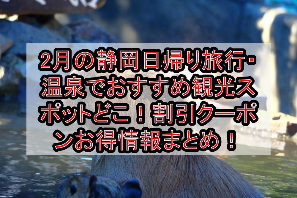 2月の静岡日帰り旅行・温泉でおすすめ観光スポットどこ!割引クーポンお得情報まとめ!