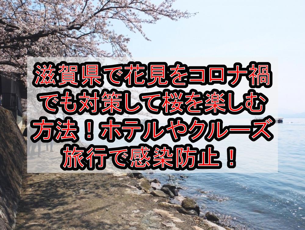 滋賀県で花見をコロナ禍でも対策して桜を楽しむ方法!ホテルやクルーズ旅行で感染防止!【2021年最新】