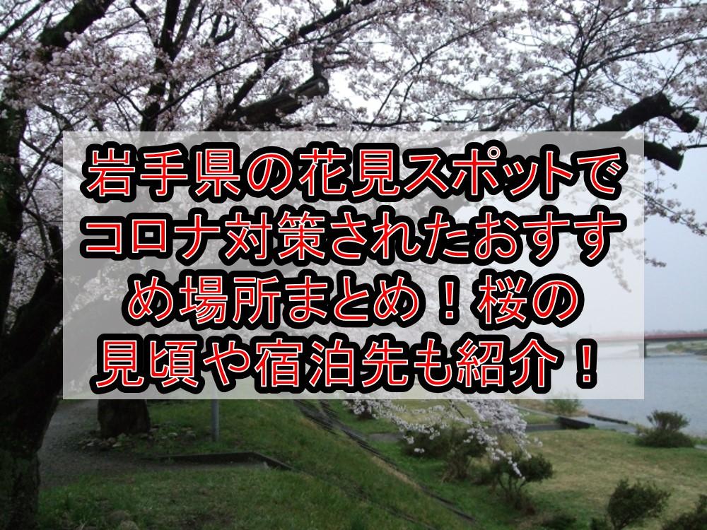 岩手県の花見スポットでコロナ対策されたおすすめ場所まとめ!桜の見頃や宿泊先も紹介!【2021最新】