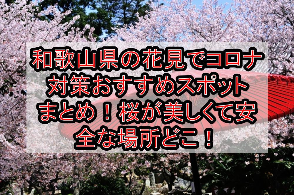 和歌山県の花見でコロナ対策おすすめスポットまとめ!桜が美しくて安全な場所どこ!