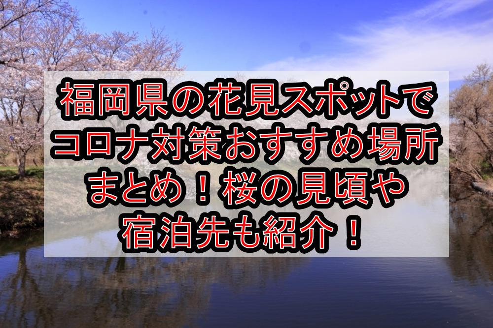 福岡県の花見スポットでコロナ対策おすすめ場所まとめ!桜の見頃や宿泊先も紹介!【2021年最新】
