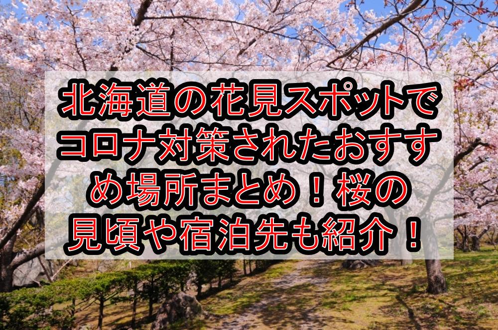 北海道の花見スポットでコロナ対策されたおすすめ場所まとめ!桜の見頃や宿泊先も紹介!