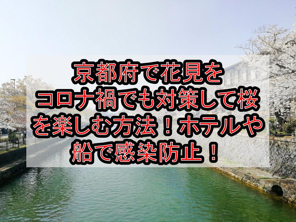 京都府で花見をコロナ禍でも対策して桜を楽しむ方法!ホテルや船で感染防止!【2021年最新】