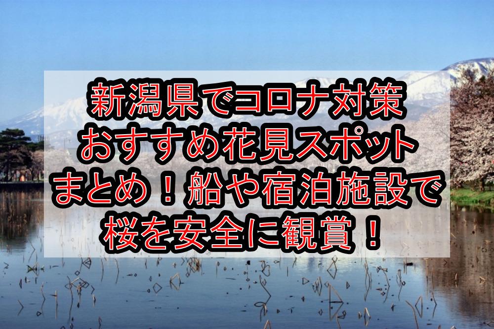 新潟県でコロナ対策おすすめ花見スポットまとめ!船や宿泊施設で桜を安全に観賞!【2021最新】