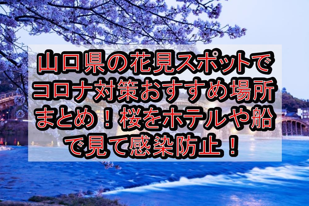 山口県の花見スポットでコロナ対策おすすめ場所まとめ!桜をホテルや船で見て感染防止!【2021年最新】