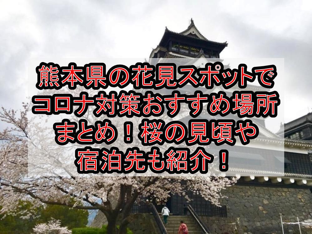 熊本県の花見スポットでコロナ対策おすすめ場所まとめ!桜の見頃や宿泊先も紹介!【2021年最新】