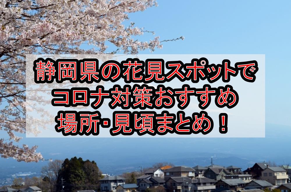 静岡県の花見スポットでコロナ対策おすすめ場所・見頃まとめ!桜をホテルや船で感染防止!【2021年最新】