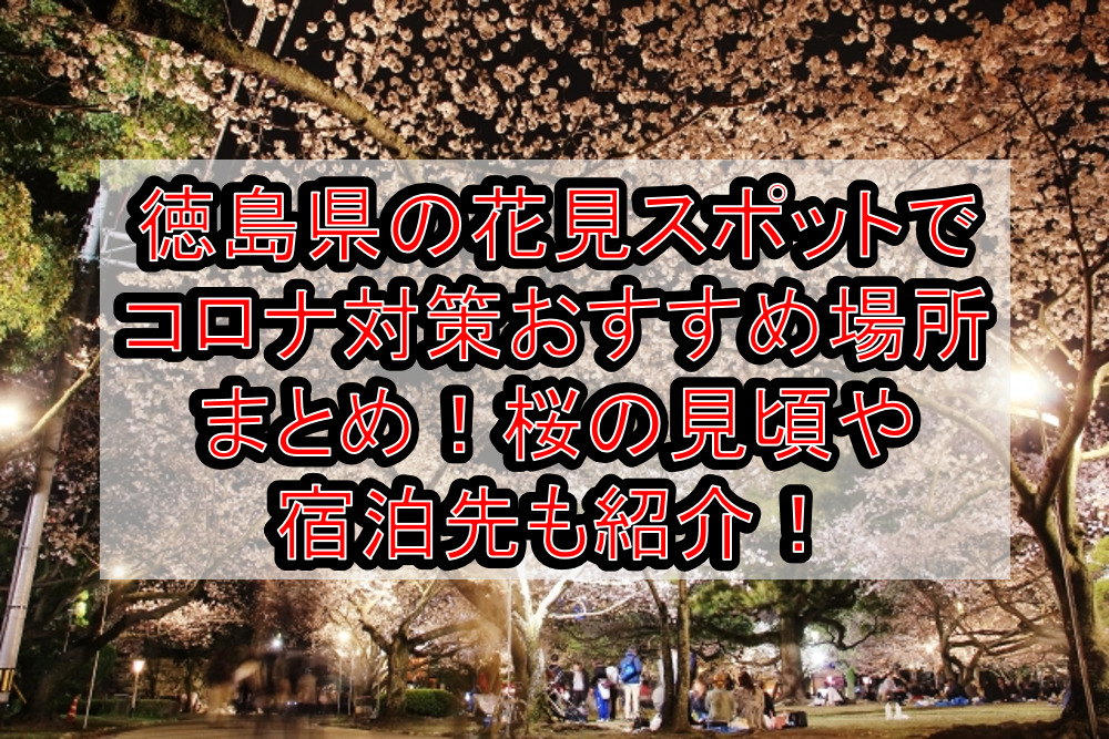 徳島県の花見スポットでコロナ対策おすすめ場所まとめ!桜の見頃や宿泊先も紹介!