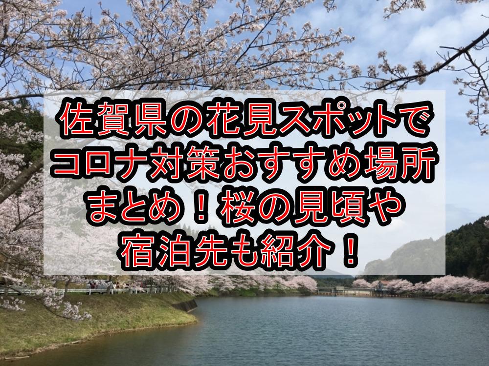 佐賀県の花見スポットでコロナ対策おすすめ場所まとめ!桜の見頃や宿泊先も紹介!