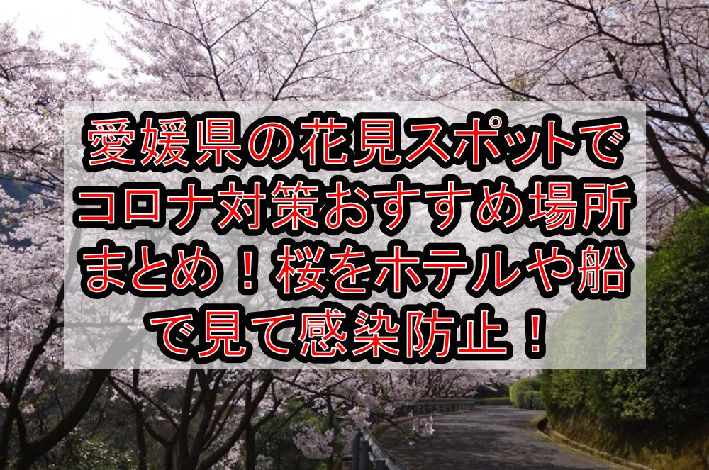 愛媛県の花見スポットでコロナ対策おすすめ場所まとめ!桜をホテルや船で見て感染防止!【2021年最新】