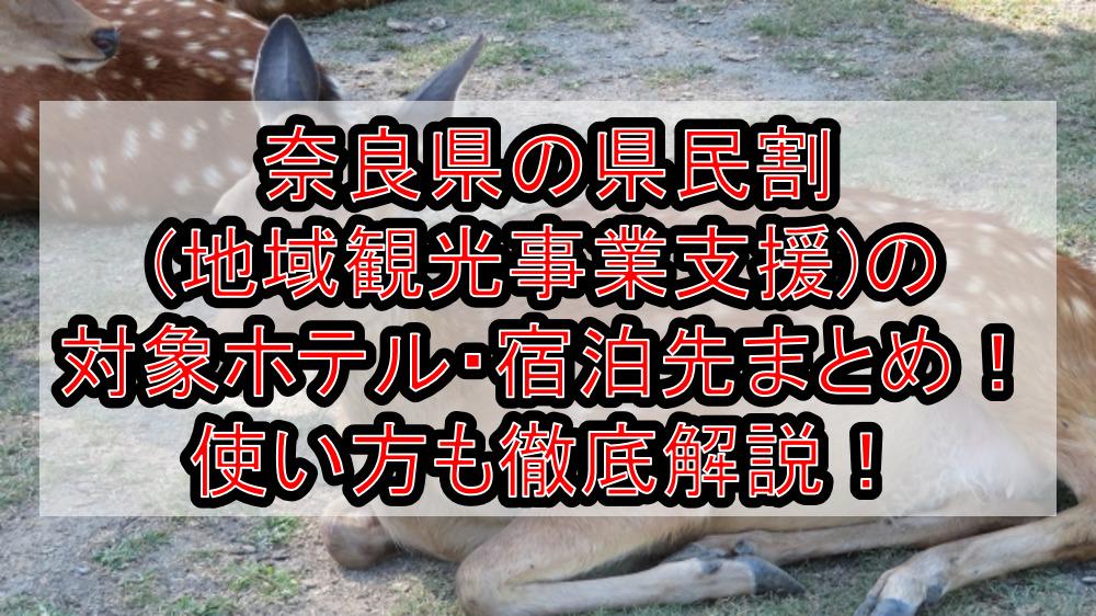 奈良県の県民割(地域観光事業支援)の対象ホテル・宿泊先まとめ!GoTo代替で使い方も徹底解説!