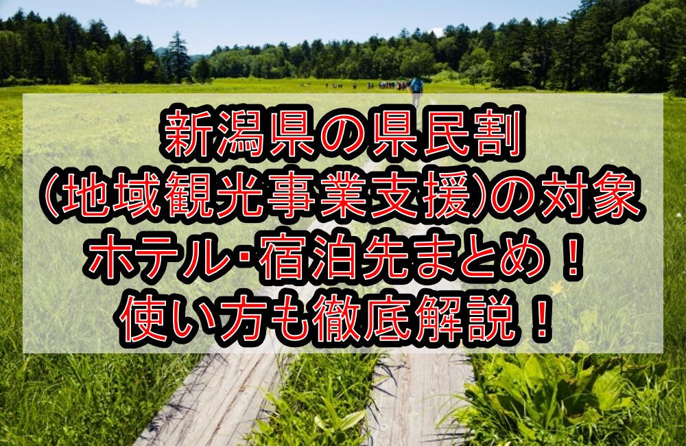 新潟県の県民割(地域観光事業支援)の対象ホテル・宿泊先まとめ!GoTo代替で使い方も徹底解説!