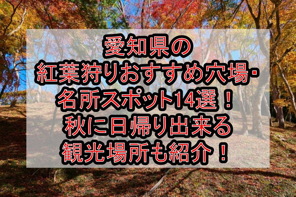 愛知県の紅葉狩りおすすめ穴場・名所スポット14選!秋に日帰り出来る観光場所も紹介!