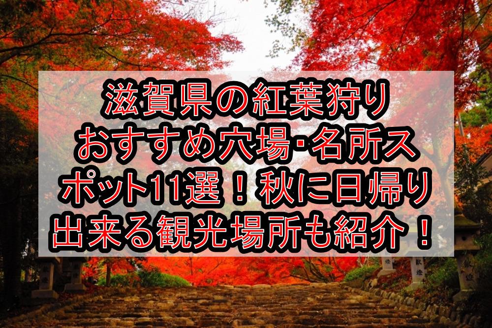 滋賀県の紅葉狩りおすすめ穴場・名所スポット11選!秋に日帰り出来る観光場所も紹介!