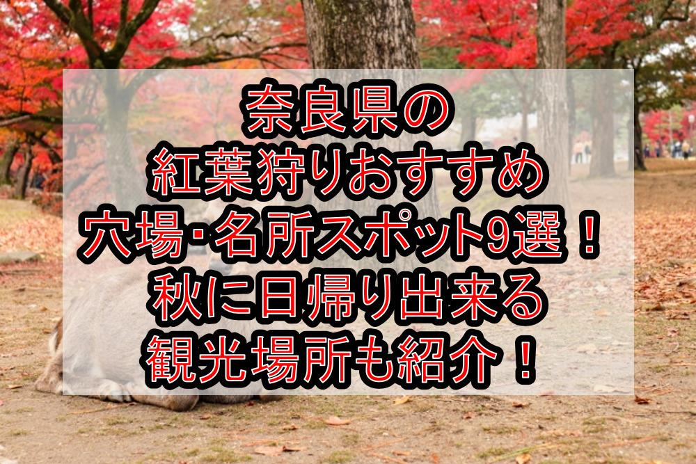 奈良県の紅葉狩りおすすめ穴場・名所スポット9選!秋に日帰り出来る観光場所も紹介!