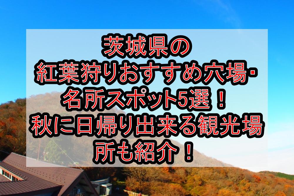 茨城県の紅葉狩りおすすめ穴場・名所スポット5選!秋に日帰り出来る観光場所も紹介!