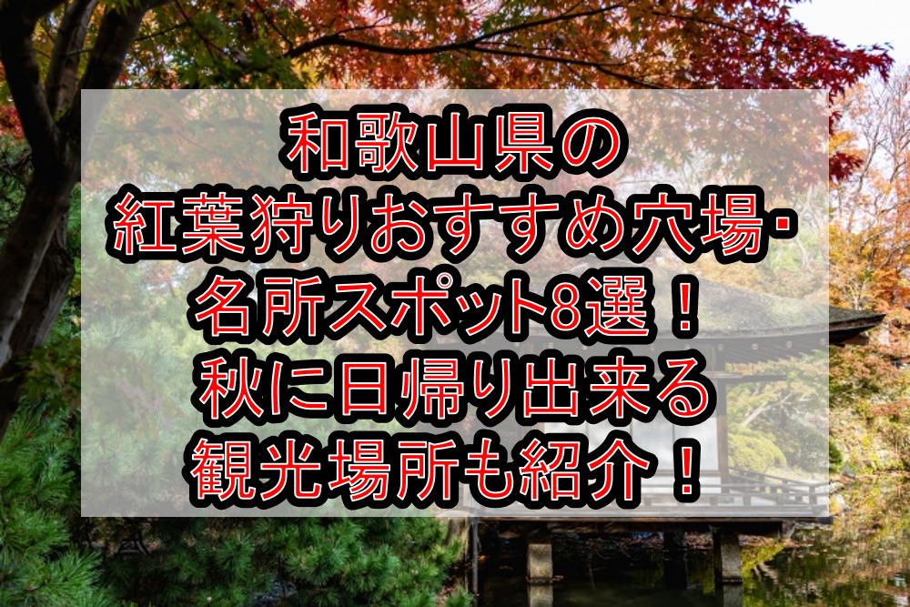 和歌山県の紅葉狩りおすすめ穴場・名所スポット8選!秋に日帰り出来る観光場所も紹介!