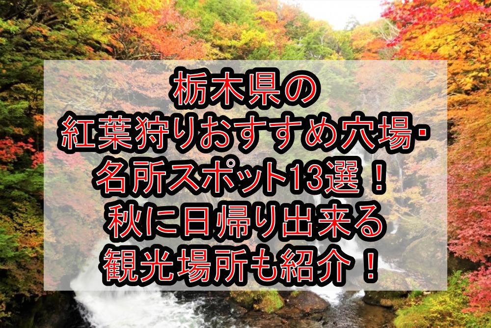 栃木県の紅葉狩りおすすめ穴場・名所スポット13選!秋に日帰り出来る観光場所も紹介!