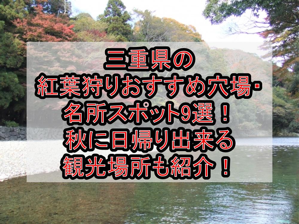 三重県の紅葉狩りおすすめ穴場・名所スポット9選!秋に日帰り出来る観光場所も紹介!