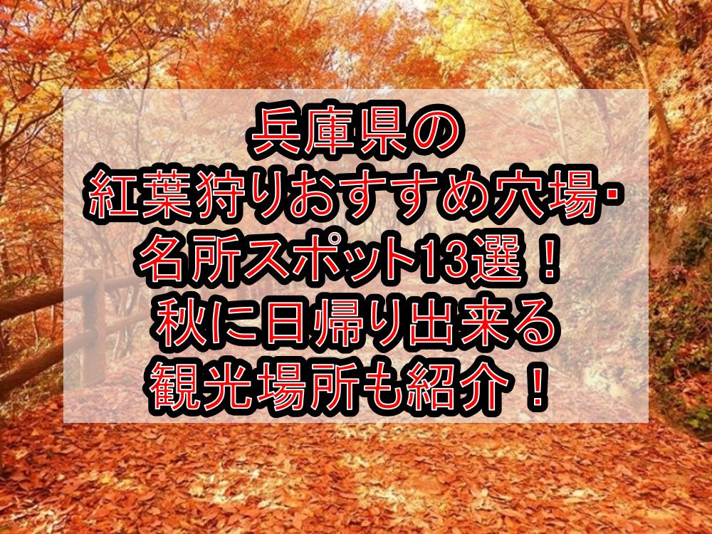 兵庫県の紅葉狩りおすすめ穴場・名所スポット13選!秋に日帰り出来る観光場所も紹介!
