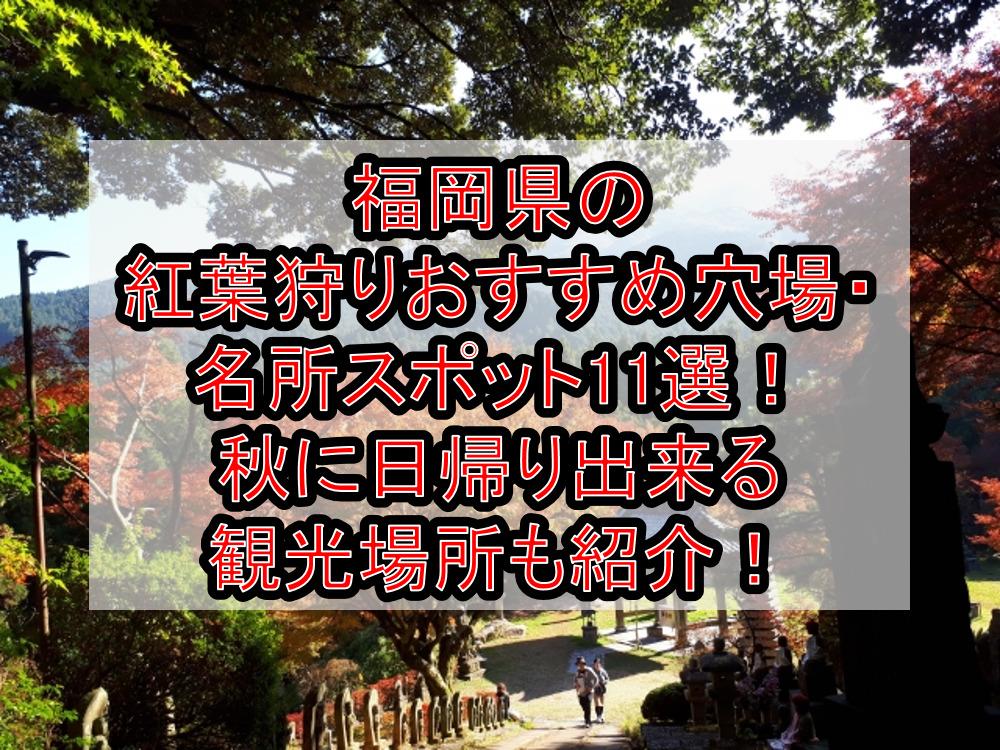 福岡県の紅葉狩りおすすめ穴場・名所スポット11選!秋に日帰り出来る観光場所も紹介!