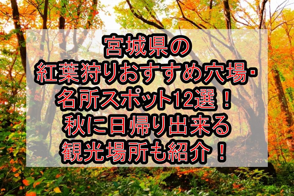 宮城県の紅葉狩りおすすめ穴場・名所スポット12選!秋に日帰り出来る観光場所も紹介!