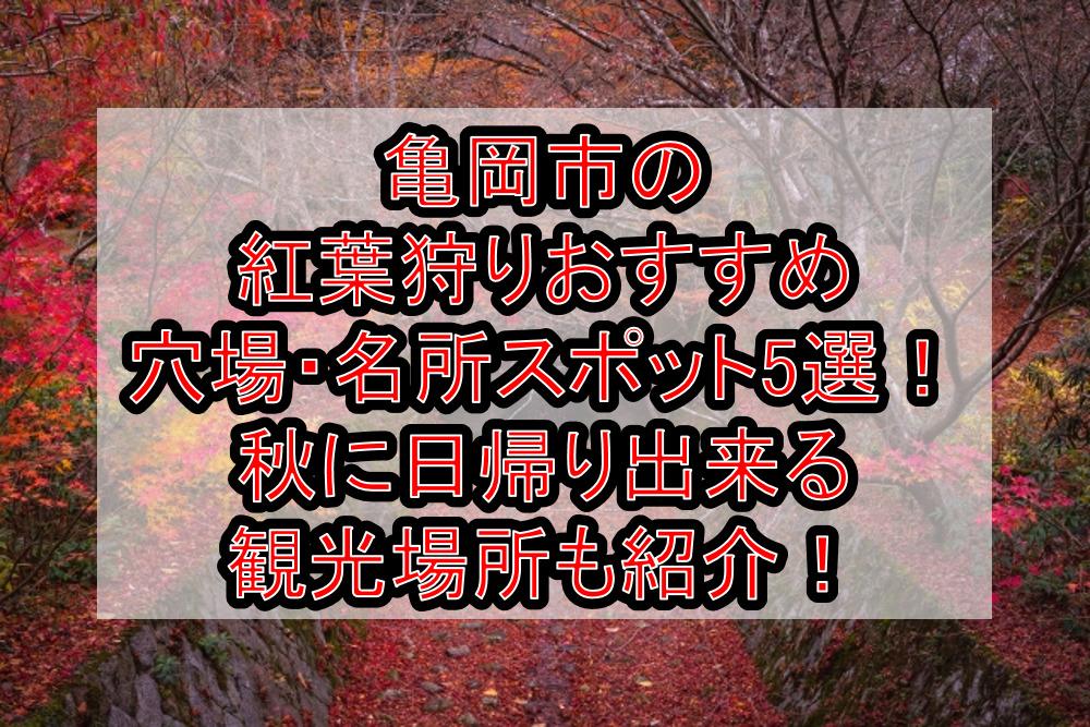亀岡市の紅葉狩りおすすめ穴場・名所スポット5選!秋に日帰り出来る観光場所も紹介!